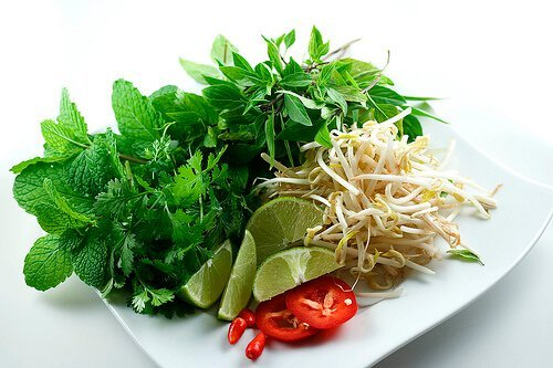 Fresh Herbs for Vietnamese Pho Recipe