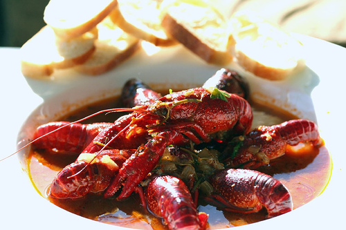 Killer Cajun Crawfish