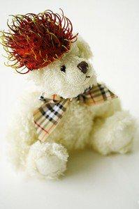 rambutan_bear_hat