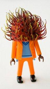 rambutan hat