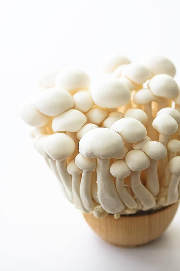 japanese-white-beech-mushroom