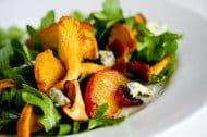 chanterelle-bacon-blue-cheese-plum-salad-88