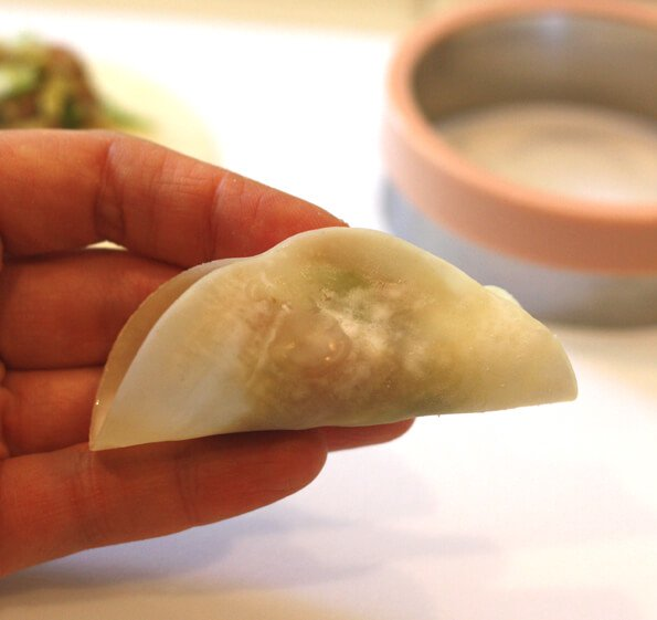 Gyoza Recipe - Fold wrapper in half