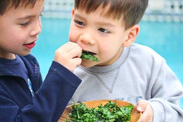 Kale Chips Recipe - Steamy Kitchen Recipes
