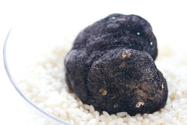 Black Oregon Truffle