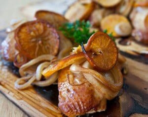 Citrus-plank-chicken-2140