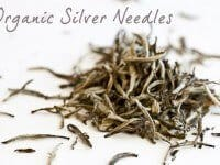 asian-teas-6766-silver-needles