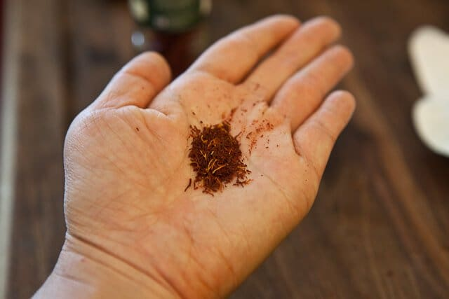 saffron in hand for bouillabaisse recipe