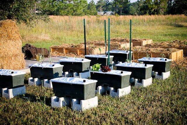 earthbox garden
