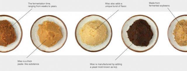 Creamy Miso Chicken Pasta - Steamy Kitchen Recipes