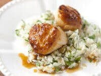 Scallops-with-Apricot-Recipe.jpg