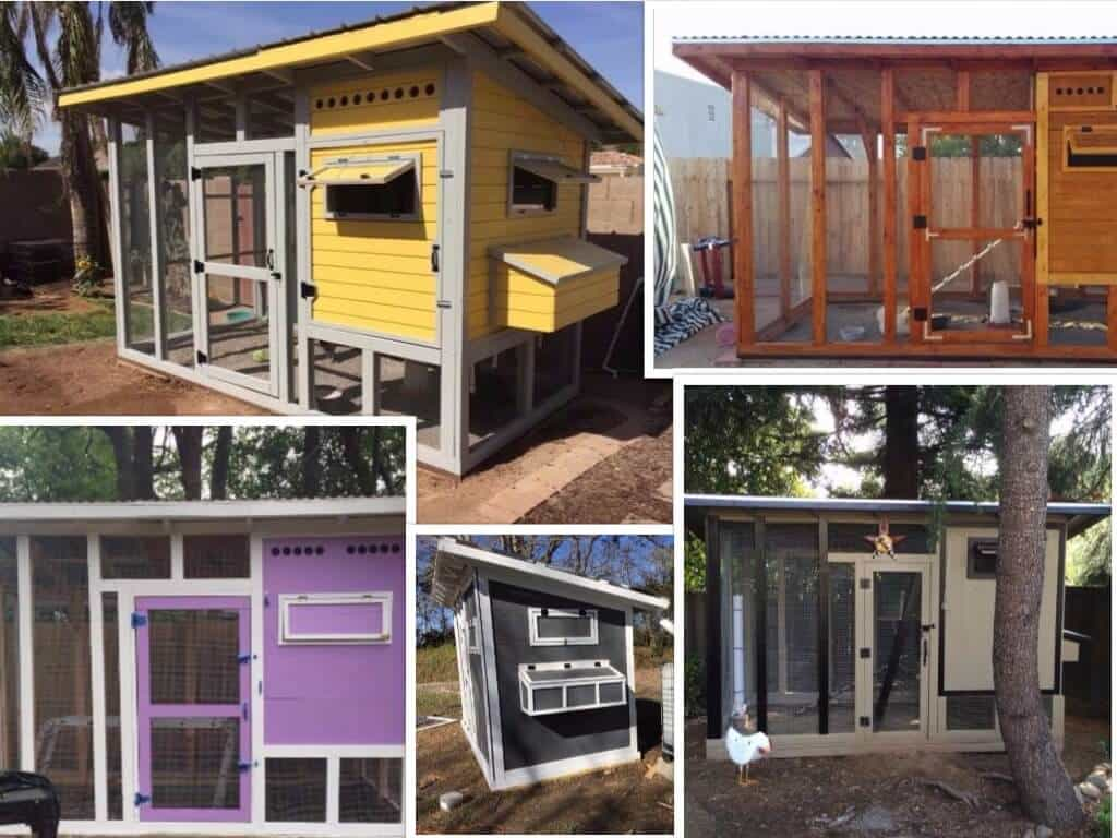 User-Submitted Chicken Coop Pictures