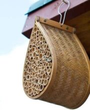 mason-bee-house-feature-7079-2