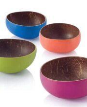 coco-mini-bowls