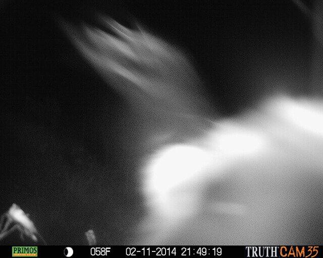 Mystery Killer Caught on Camera