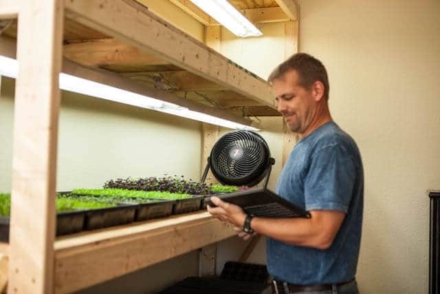Grow: The Microgreens Mad Scientist • Steamy Kitchen Recipes Giveaways