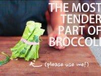 broccoli-stalk-41