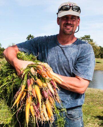 hydroponic-carrots-1467