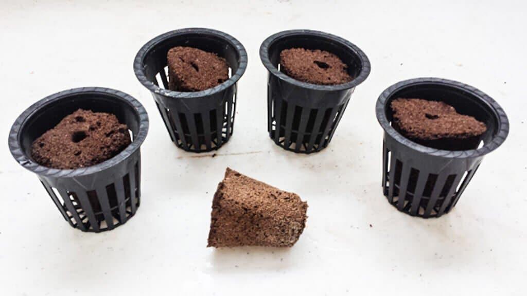 tub-hydroponics-8-15