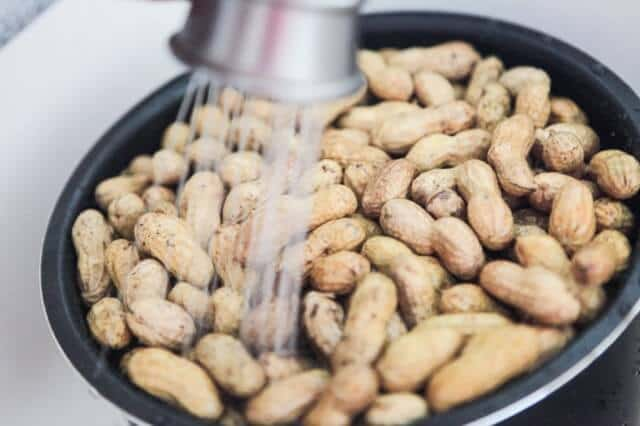 chinese-boiled-peanuts-recipe-2060