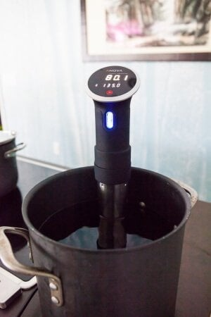 Anova Sous Vide Review