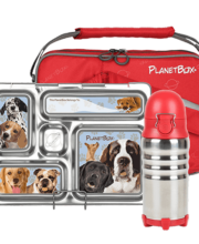 planetbox lunch box review 1