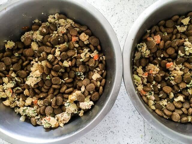 farmers-dog-food-review-0582
