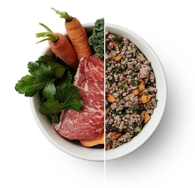 Carrot Dog Food Recipe