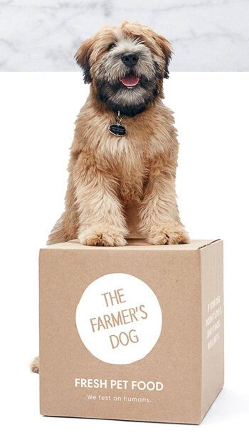 farmers-dog-food-review-55-3