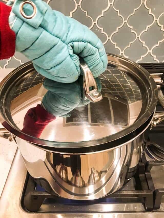 anolon tri ply clad cookware review-0801