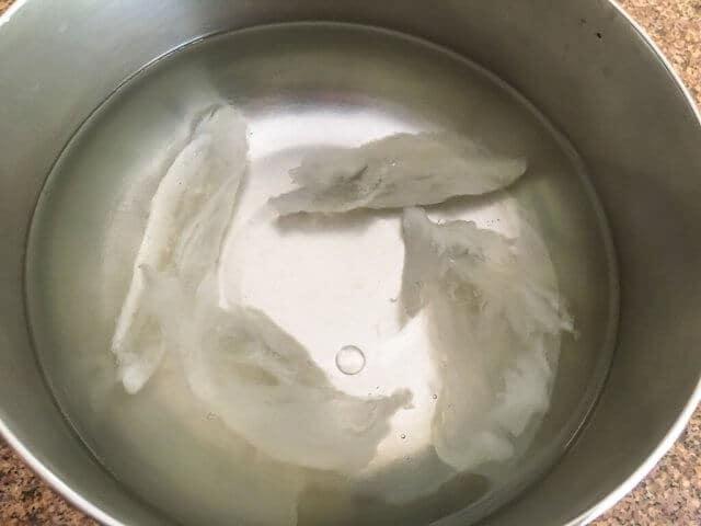 bird's nest in pot