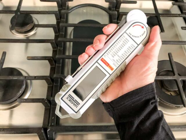 Maverick PT-100 Pro Temp Thermometer Review & Giveaway