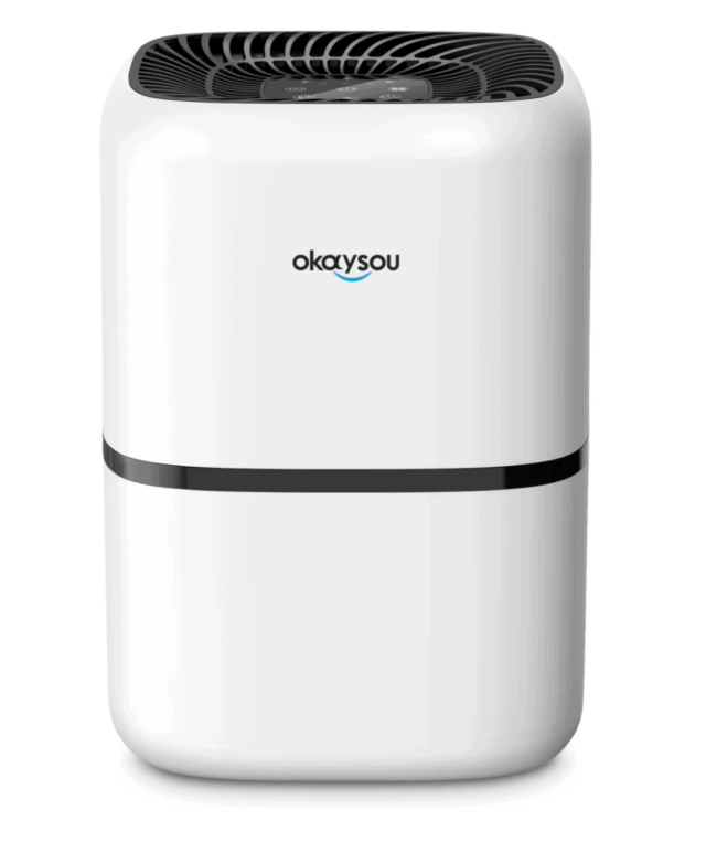 Okaysou Air Purifier Review and Giveaway