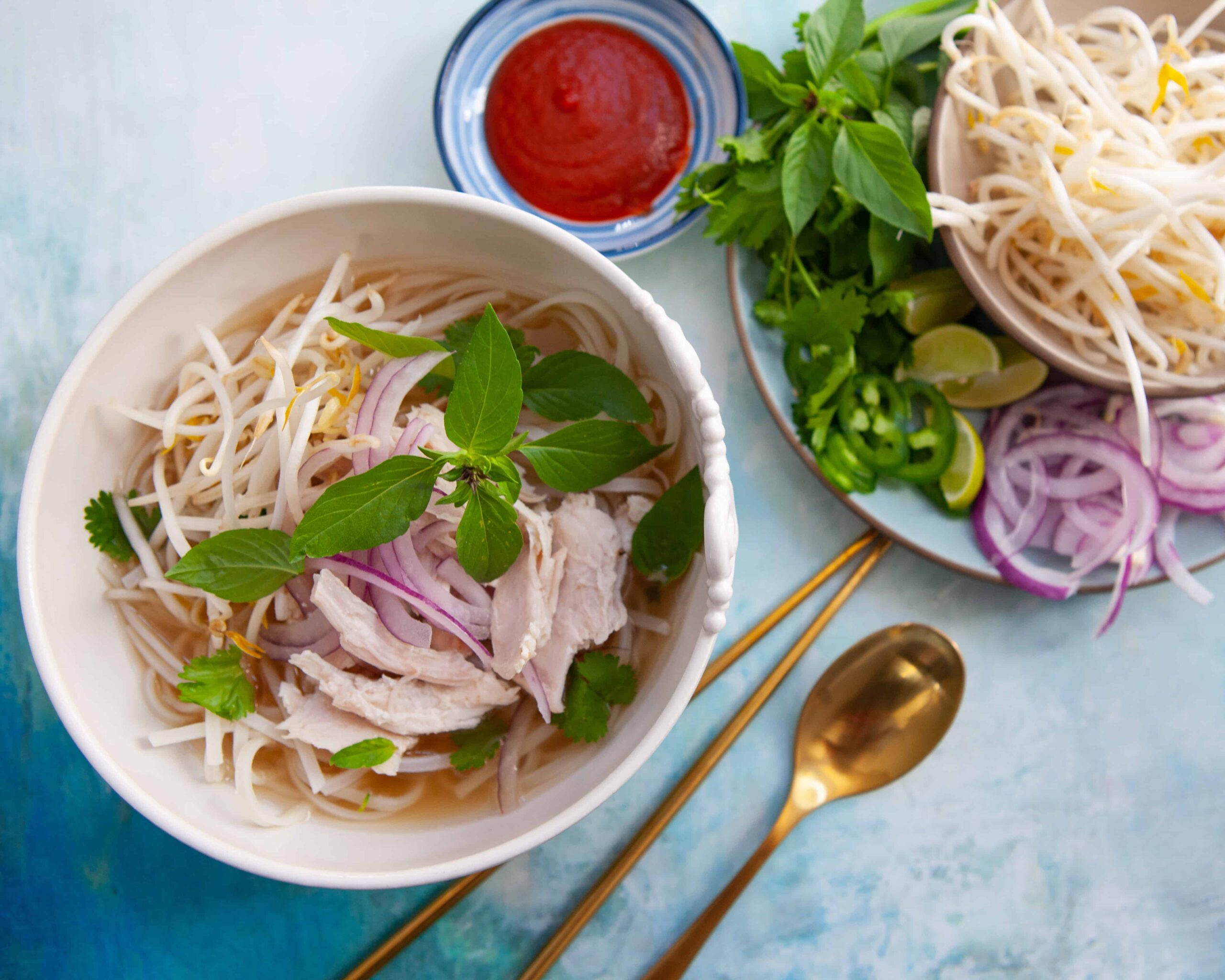 Vietnamese Turkey Pho Recipe (use leftover turkey bones!)