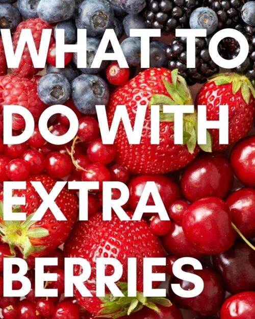 What to Do with Extra Berries