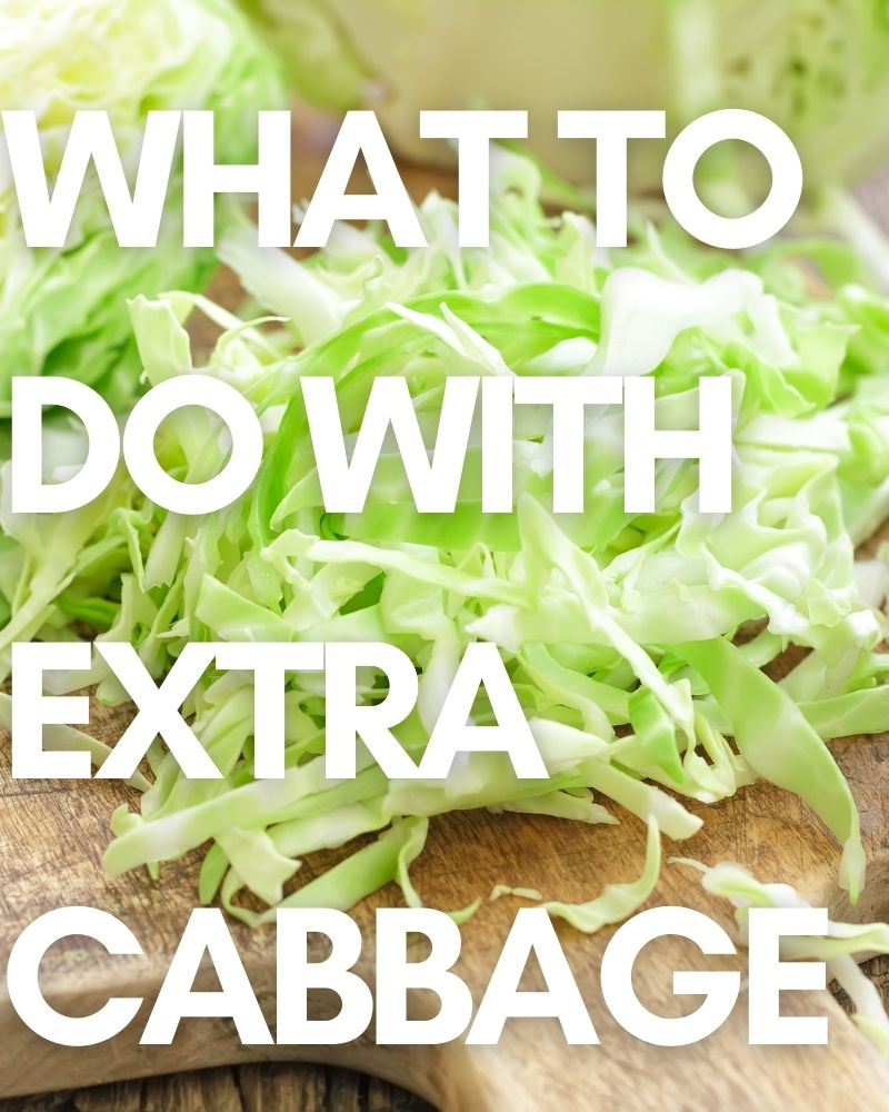 What to do with Extra Cabbage