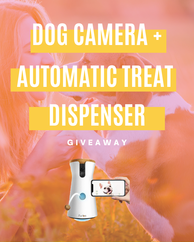 Furbo Dog Camera + Automatic Treat Dispenser GiveawayEnds in 60 days.