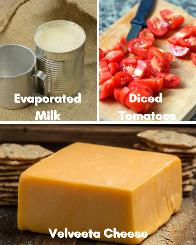 Ingredients for microwave queso dip.