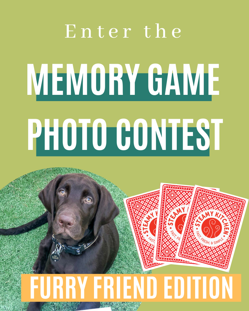 Furry Friends Memory Game Photo Contest!