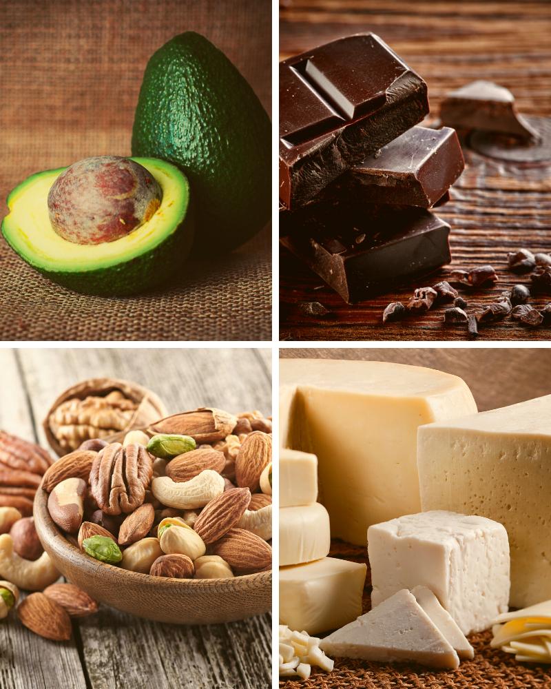 healthy fats avocado, dark chocolate, nuts and cheese