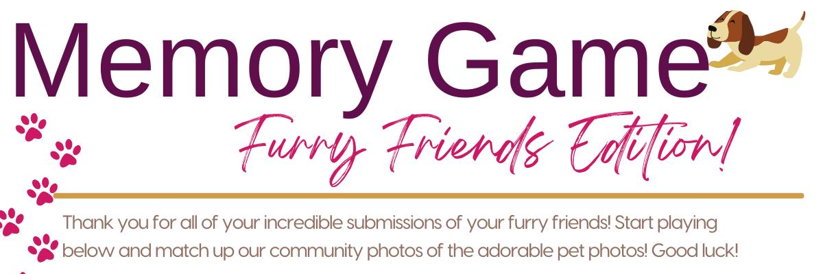 Furry Friends Memory Game