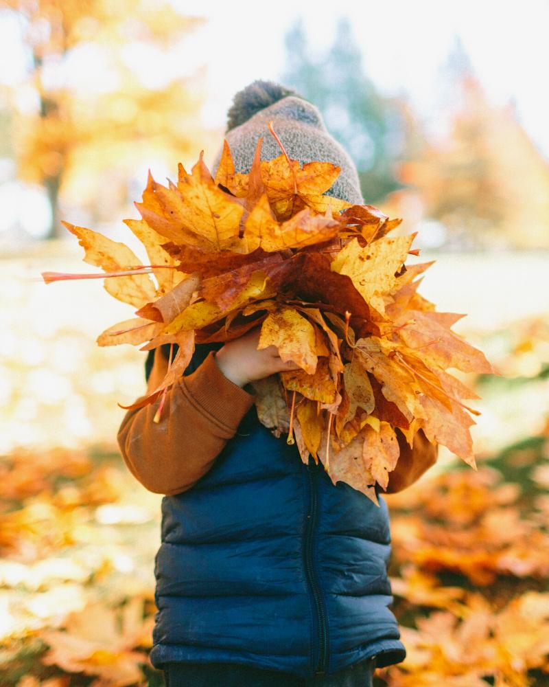 child hugging leaves