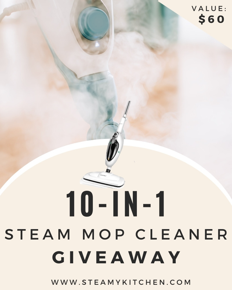 10-in-1 Steam Cleaner Giveaway