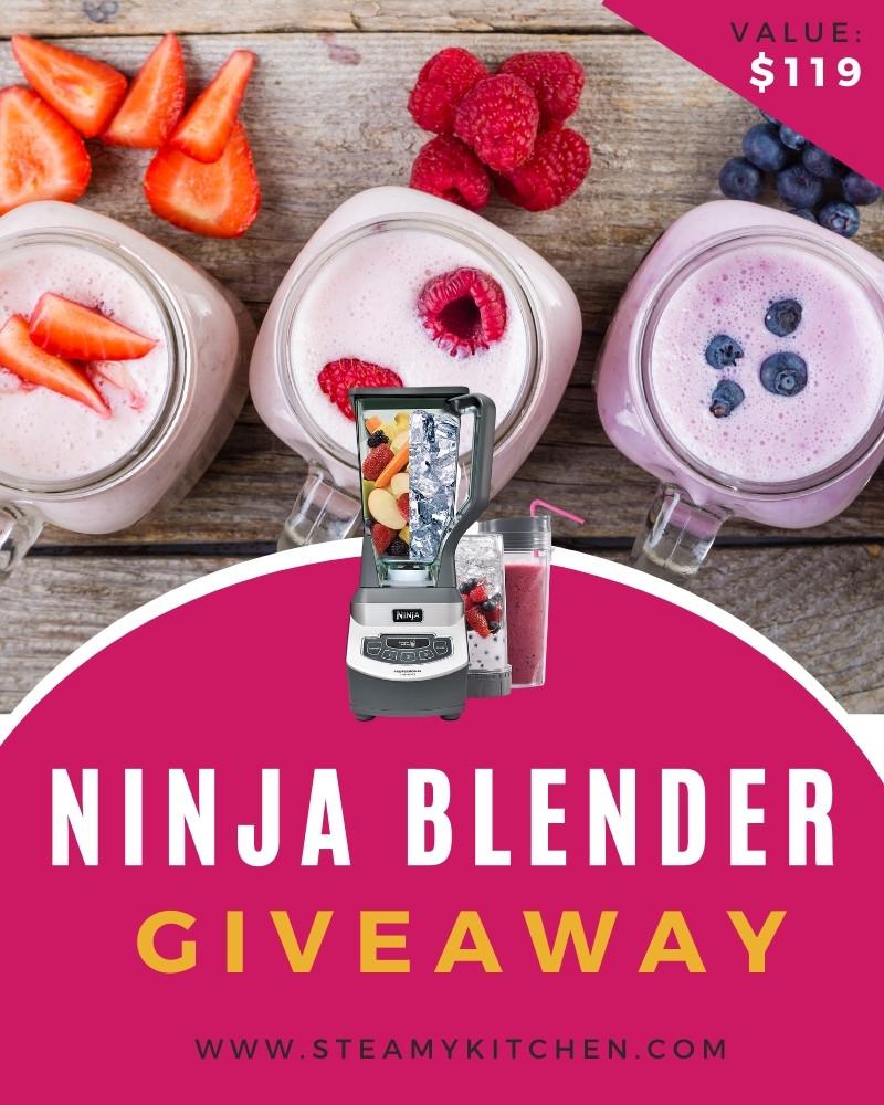 Ninja Professional Blender Giveaway